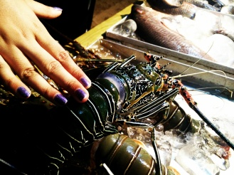A live, well almost, LOBSTER!
